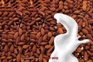 שקדים עם חלב   עיבוד: שולי סונגו ©